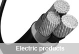 Electric products